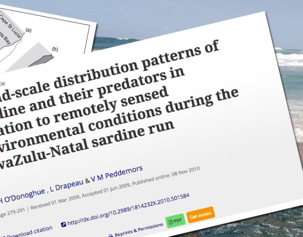 Broad-scale distribution patterns of sardine and their predators in relation to remotely sensed environmental conditions during the KwaZulu-Natal sardine run