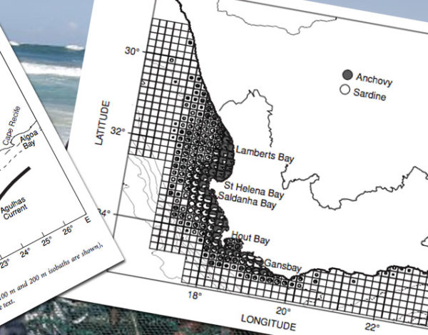 The role of ichthyoplankton surveys in recruitment research and management of South African anchovy and sardine